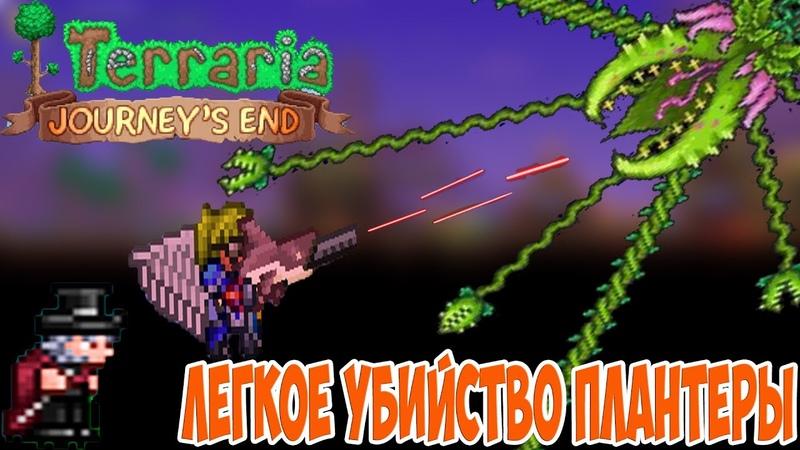 Цветок переросток и Голем №6 Terraria 1 4 Стрелок Master mode