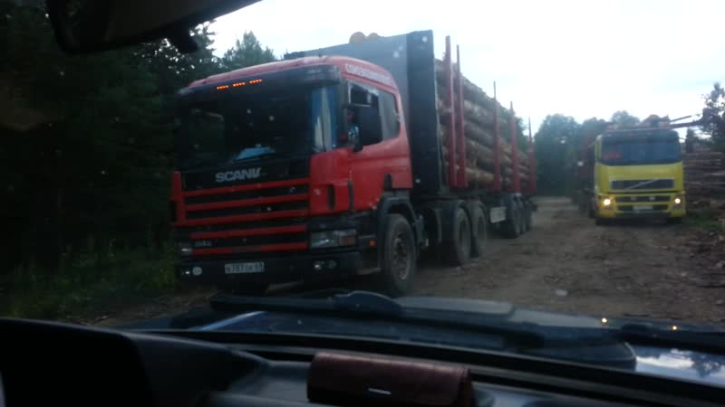 7 августа 2020 года лесовозы Новгородская область Пестовский район деревня Борисовка варварский выпил леса