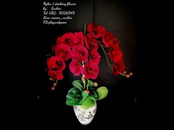 EP 174 ฟาแลนนอปซิส Phalaenopsis How to make nylonflower by ployandpoom