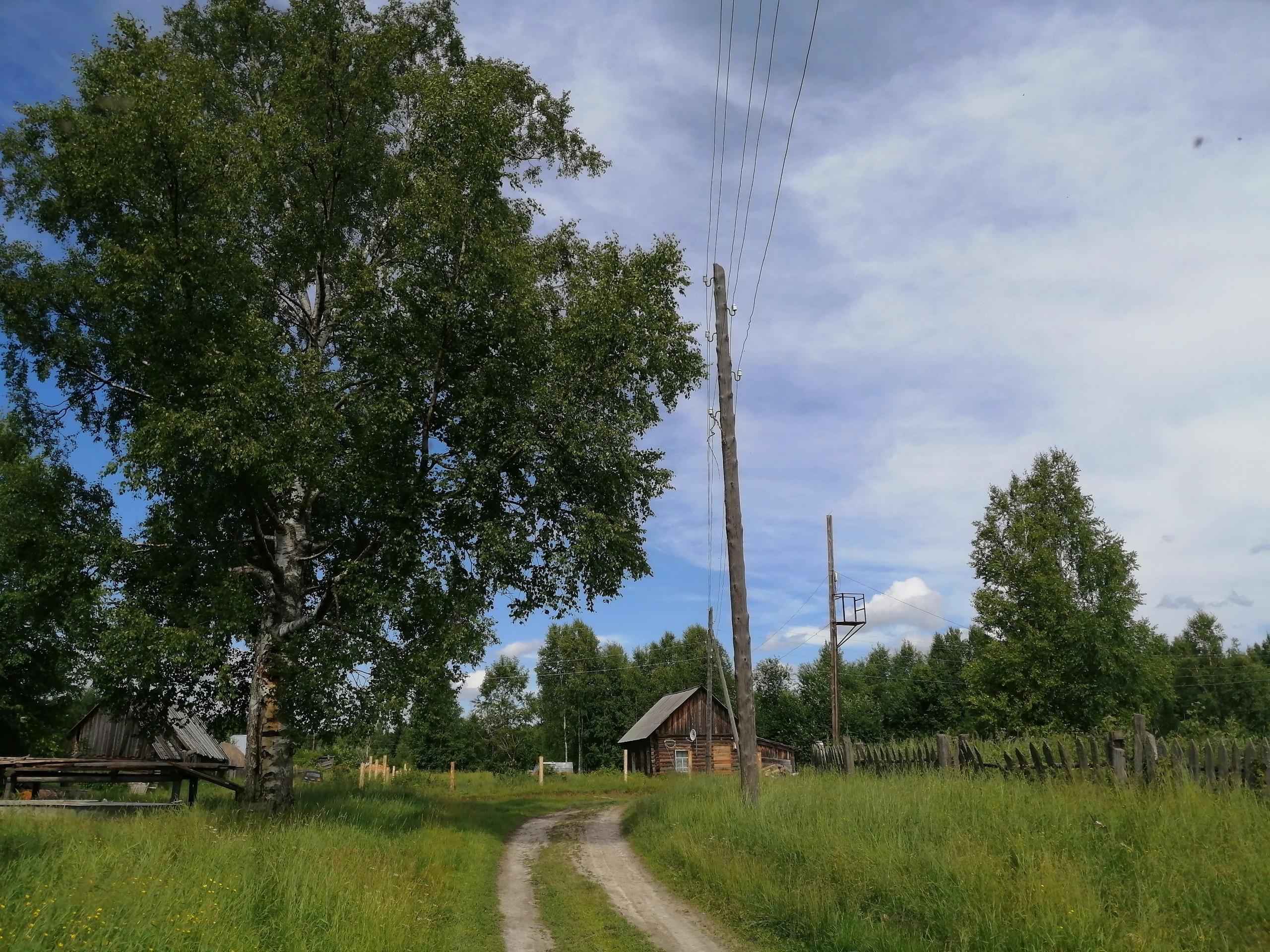 С. Напас, Каргасокский район, Томская область, июль 2021 - фото - Фото