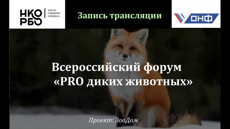 Всероссийский форум PRO диких животных