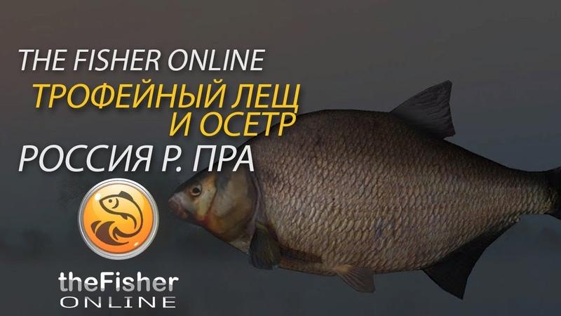 Ловим леща и осетра TheFisher online Россия река Пра