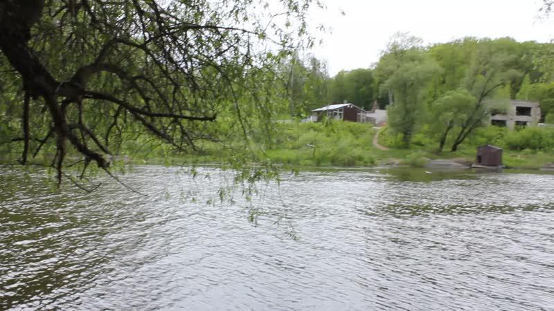 Брянск Роща Соловьи Река Десна