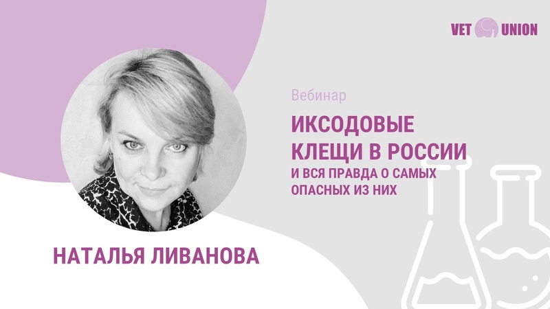 Иксодовые клещи в России и трансмиссивные заболевания собак и кошек.