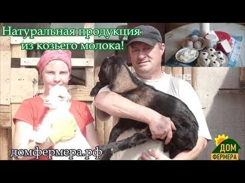 Козий рай посёлок Подгорный домфермера рф