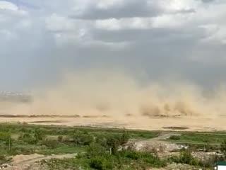 Новосибирск накрыло пылью