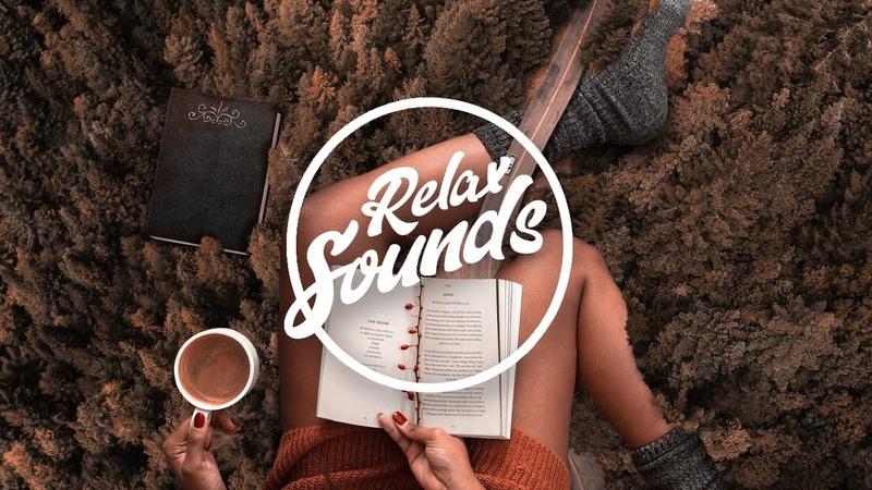 Lo Fi музыка для работы Расслабляющая музыка Фоновая музыка Звуки релакса