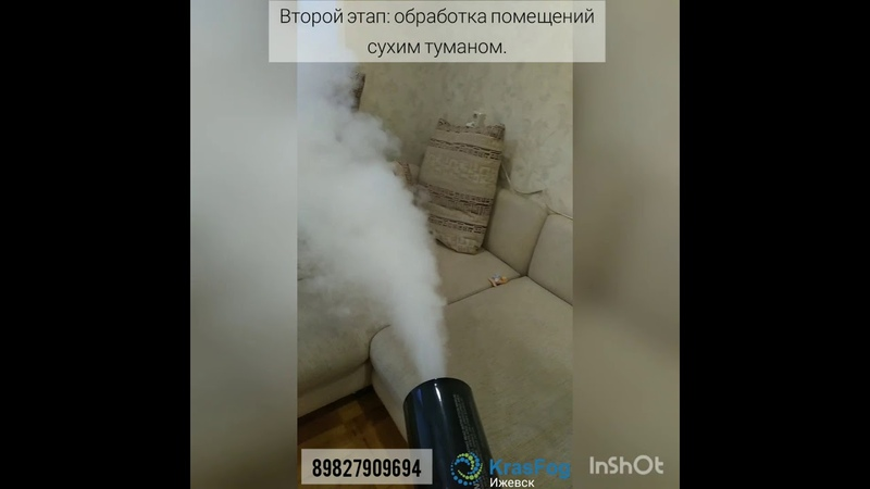 Обработка квартиры от запаха кошачьей мочи