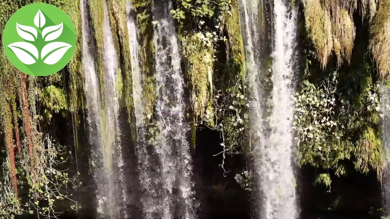 Beautiful tropical waterfall The sound noise of a tropical stream for sleep and relaxation