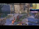 The Elder Scrolls Online игра. Чат читаю только на Twitch