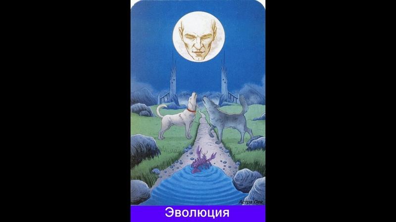 Магия для магов № 13 Не полнолуние а полный Месяц Янь перепутали с инь Ложь или невежество ION