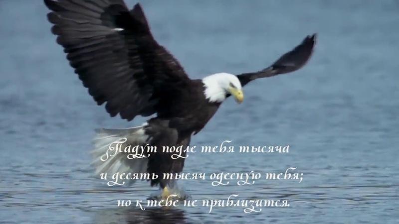 Псалом 90 Живущий под кровом Всевышнего под сенью Всемогущего покоится