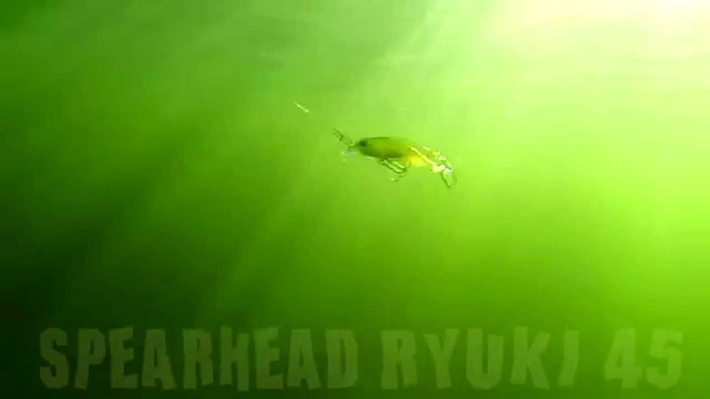 DUO`s Lures in Motion 18 Spearhead Ryuki 45