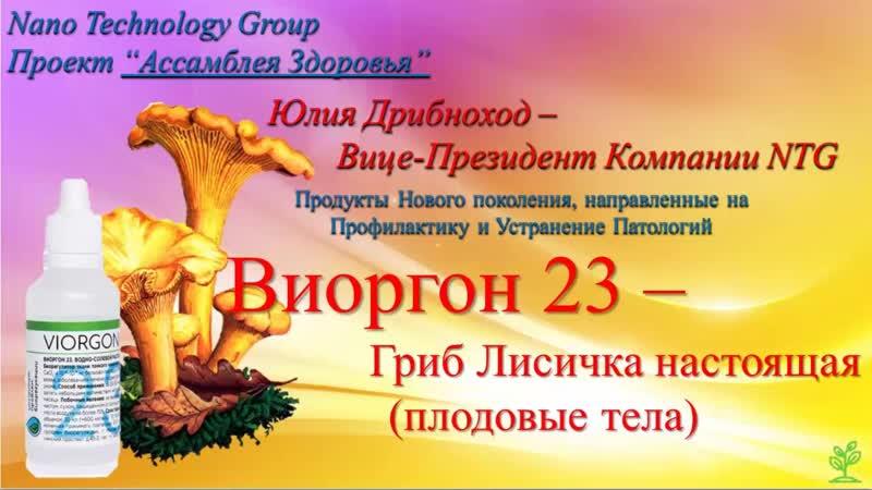 Виоргон 23 - Лисичка. Часть 1. Ю. Дрибноход. 01.04.2020.
