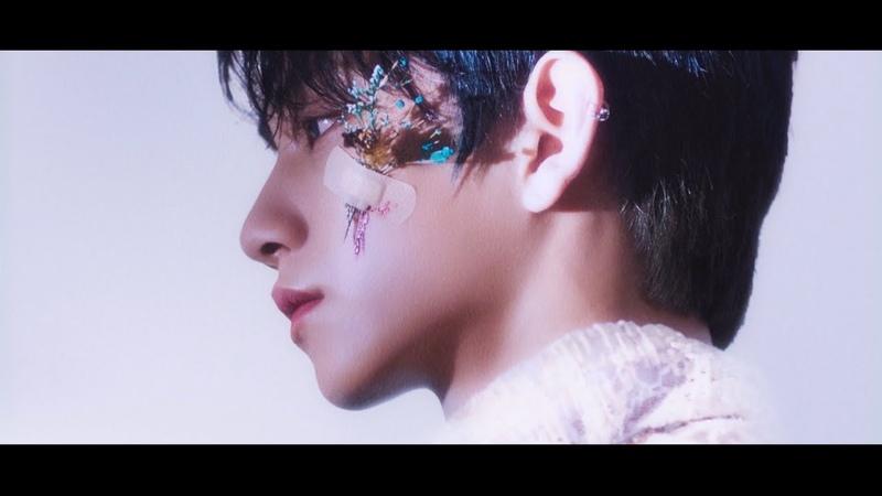 [MV]SEVENTEEN - 舞い落ちる花びら (Fallin Flower)