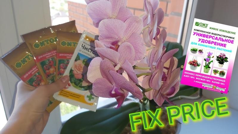Лечебные Препараты и удобрение из FIX PRICE тестирую на своих орхидеях и не только🌸