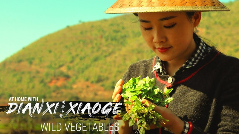 Dianxi Xiaoge Teaches Us How to Forage for Wild Greens (At Home With DXXG - E5)