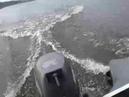 Лодка Велес 03 360 плюс Tohatsu 5лс 4т