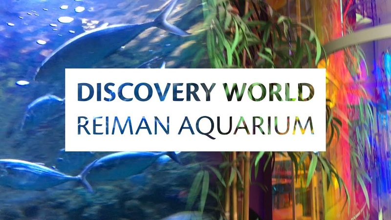 Discovery World and Reiman Aquarium Milwaukee Wisconsin