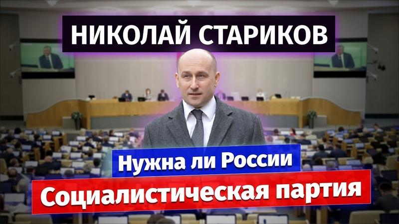 Николай Стариков нужна ли России Социалистическая партия
