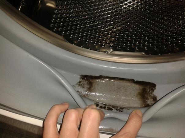 В стиральной машине появляется грибок плесени