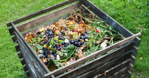Можно ли кидать яблоки в компостную яму Как правильно сделать компостную кучу