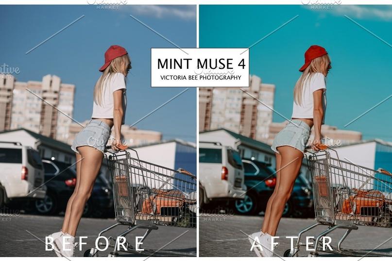 MINT MUSE.zip