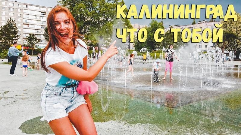 Что стало с Калининградом. Наплыв туристов из России