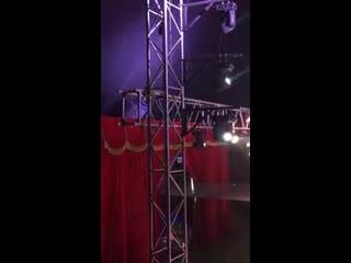 В Чили трюкачем  цирка неудачно выстрелили  из пушки.