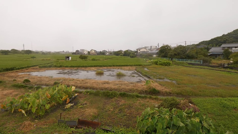 【4K】Walking without reason in rainy Omuta, Kyushu