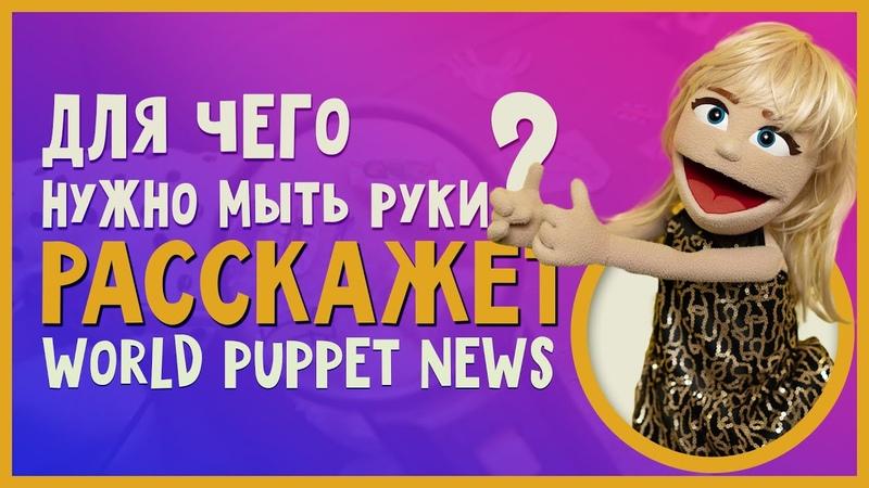 World Puppet News Выпуск 1 Как правильно мыть руки