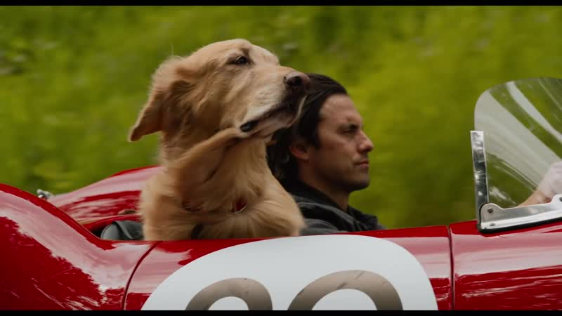 Невероятный мир глазами Энцо / The Art of Racing in the Rain.Трейлер (2019) [1080p]