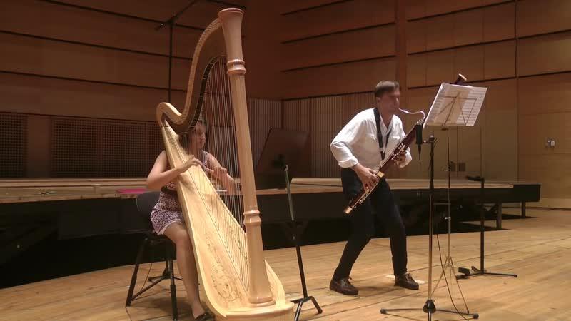 A. Vivaldi - Sonata for bassoon and harp in A minor - Roman Reznik Delphine Constantin