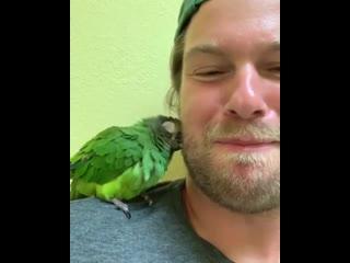 Птичка отвечает взаимностью.
