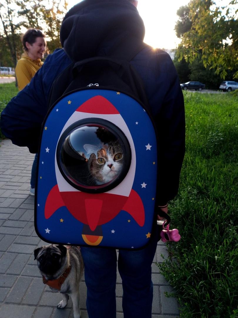 Покоряет космос и человечьи сердечки.