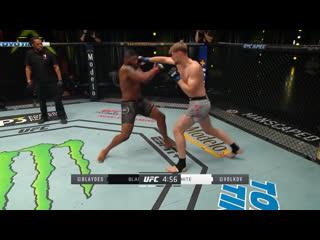 Самые яркие моменты UFC Вегас 3: Блэйдс vs Волков