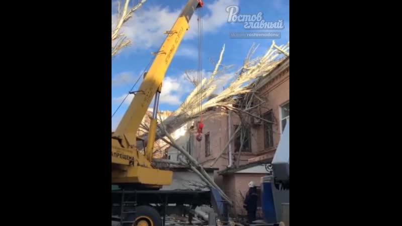 Тополь упал на дом на Университетском 52 25.2.2020 Ростов-на-Дону Главный