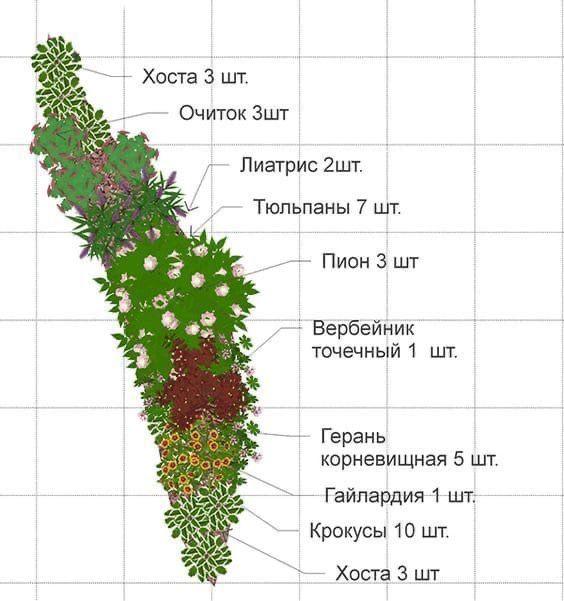 Шпаргалки по ландшафтному дизайну