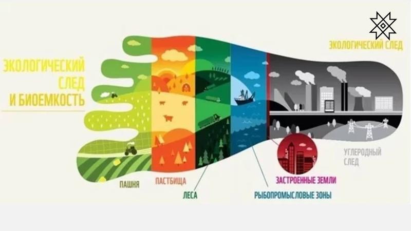 Экология среды обитания снижение экологического следа