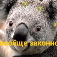 Личная фотография Елизаветы Миловановой