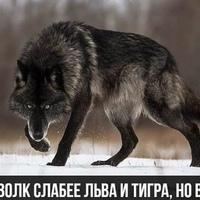 Зайнитдин Закиров