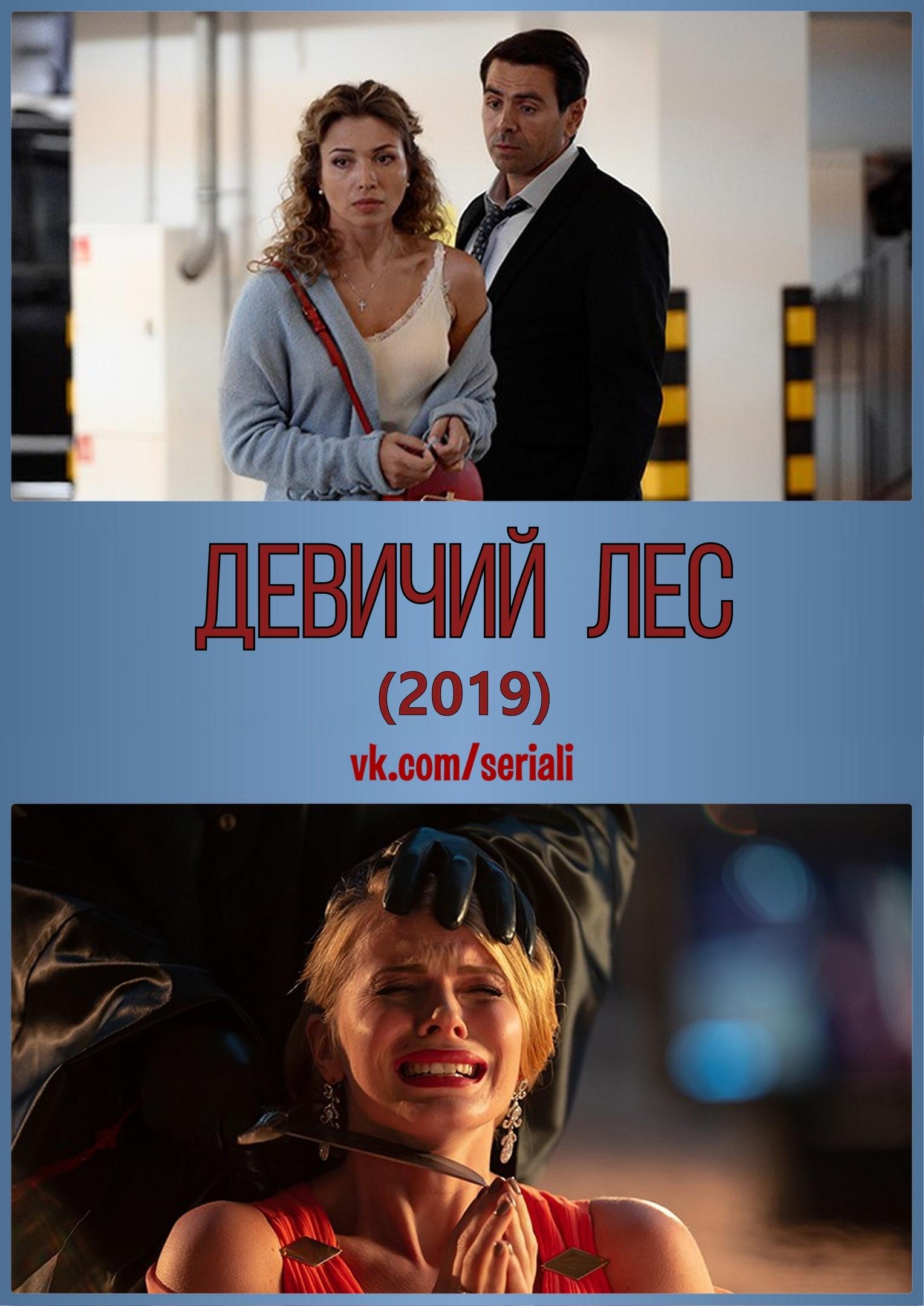 Детектив «Дeвuчuй лec» (2019) 1-4 серия из 4 HD