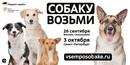 Задорожная Настя | Москва | 0
