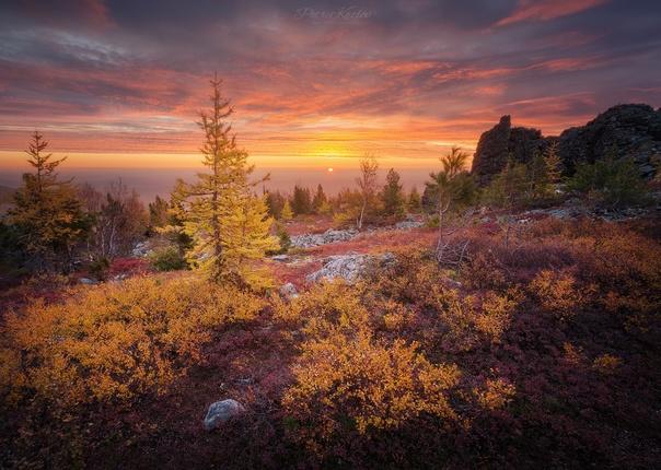 Яркие краски осени на Серебрянском Камне. Северный...