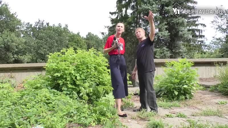 И с бензопилой и по миллиметру Как в ульяновском парке Дружбы народов девочку