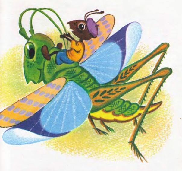 Картинки к сказке бианки как муравьишка домой спешил