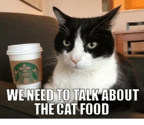 Нам нужно поговорить о кошачьем корме