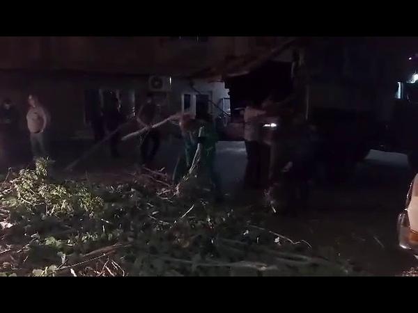 Սայաթ Նովա փողոցում քամուց տապալված ծառն ընկել է մեքենայի վրա