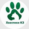ХВОСТИКИ КЗ Краснознаменск, Одинцово