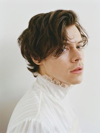 Styles Harry